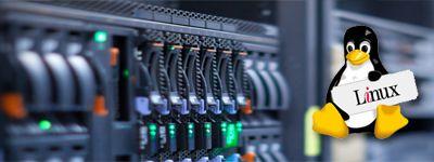 web hosting visakhapatnam